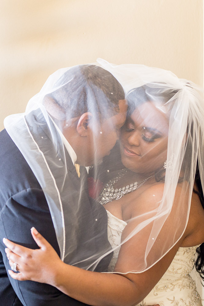 Topeka wedding photography 6th avenue ballroom formal bride and groom portrait with veil