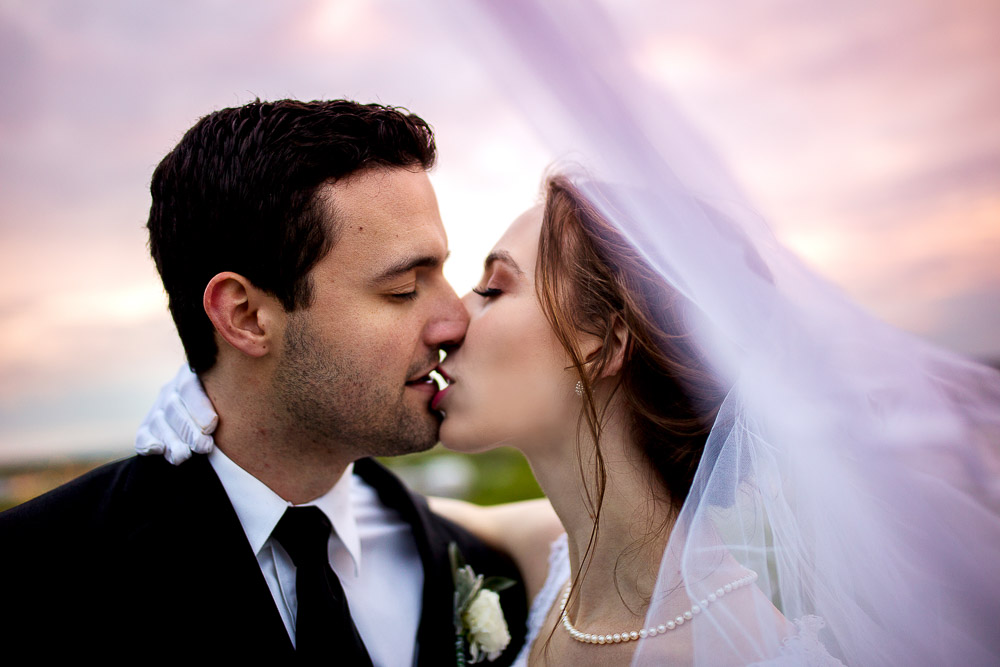 the hilltop at Berry Acres Odessa missouri wedding portrait