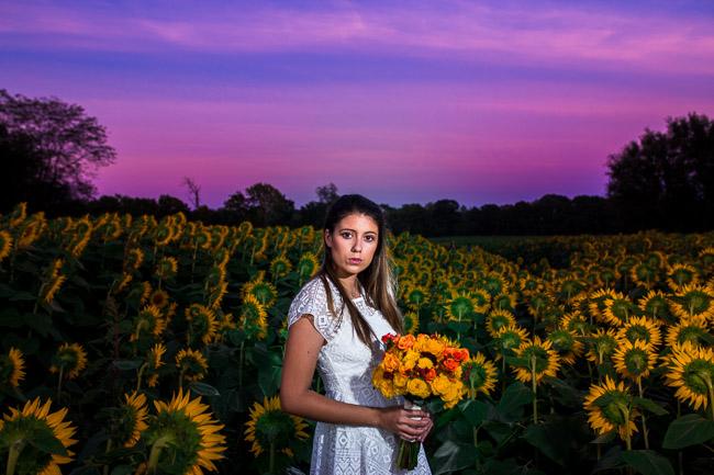 Grinter Farms sunflower field model
