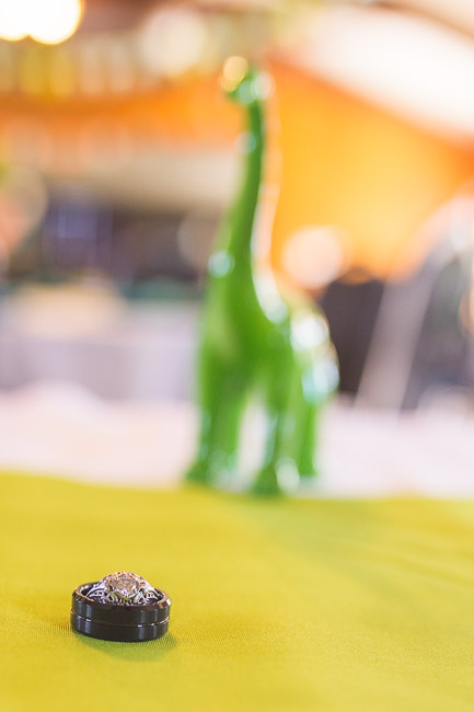 Kansas City dinosaur wedding